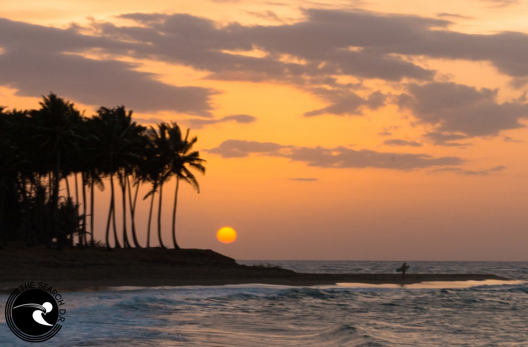 sunset sessions In Dominican republic