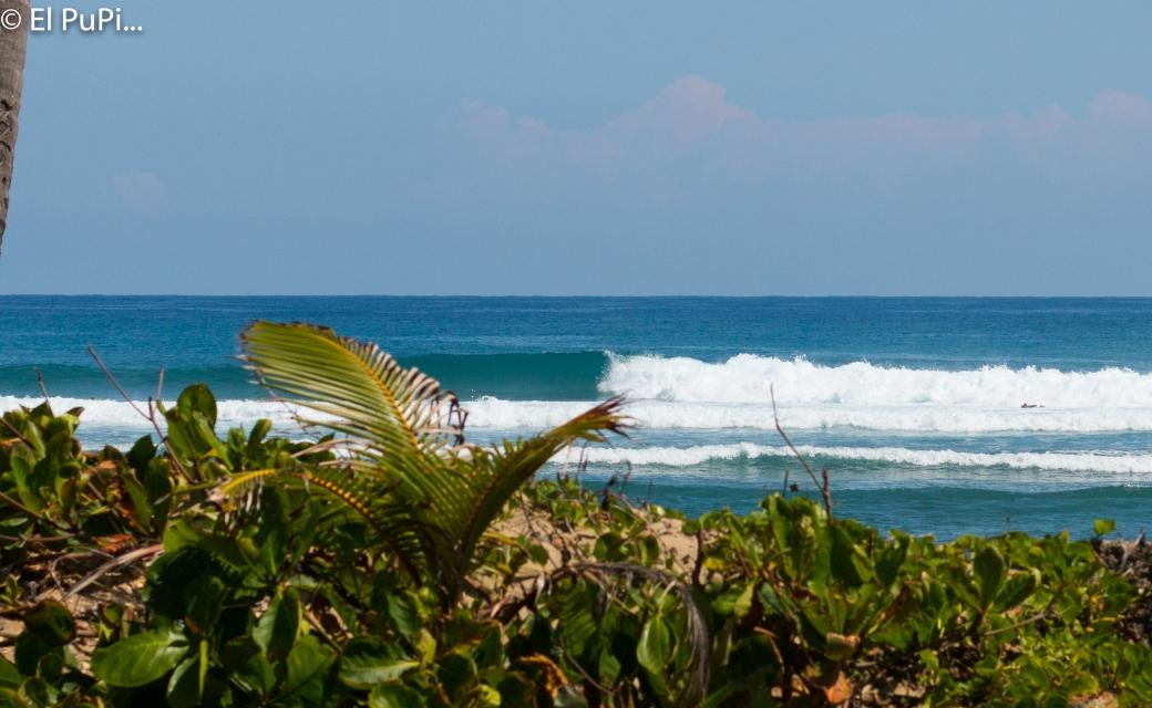 dominican surf , surf dr, cabarete