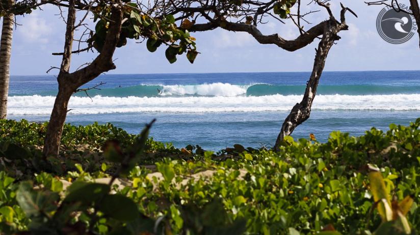 dominican surf , Jorge Mijares,